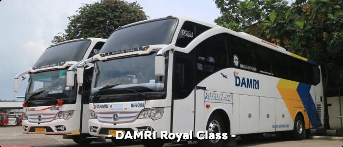 DAMRI Royal class